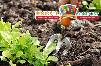 Top 5 Tips for Eco-Friendly Gardening
